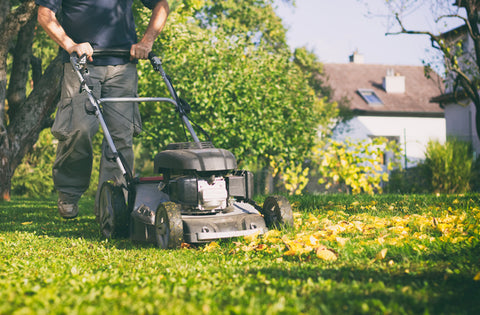 man moving lawn in autumn