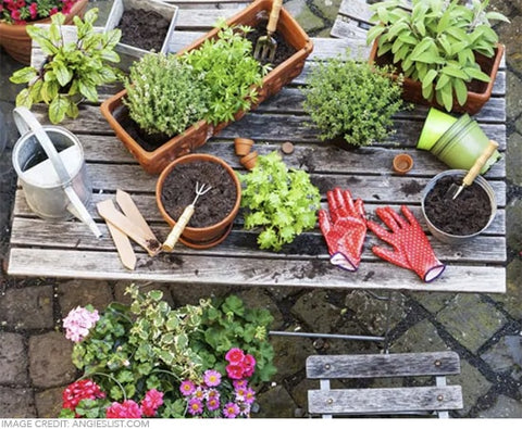 potting table in the garden