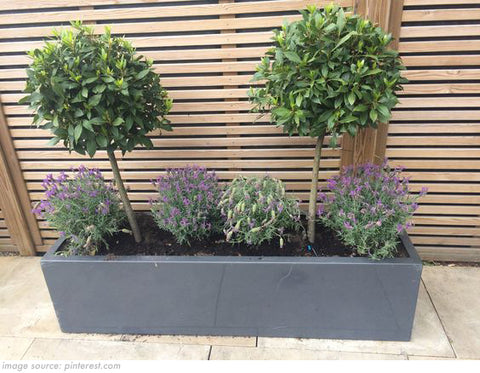 planter with artificial topiary trees and shrubs