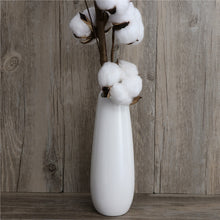 Load image into Gallery viewer, 3PCS/Pack 22 Inch Cotton Stems