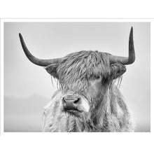 Load image into Gallery viewer, Farmhouse Highland Bull Wall Art