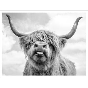 Farmhouse Highland Bull Wall Art