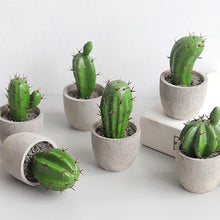 Load image into Gallery viewer, Mini Potted Cactus