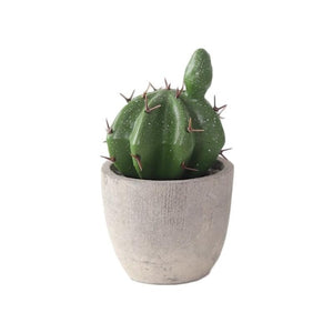 Mini Potted Cactus
