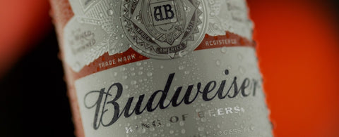 BUDWEISER BEER 355ML X 24