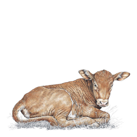 Calf Limited-Edition Print