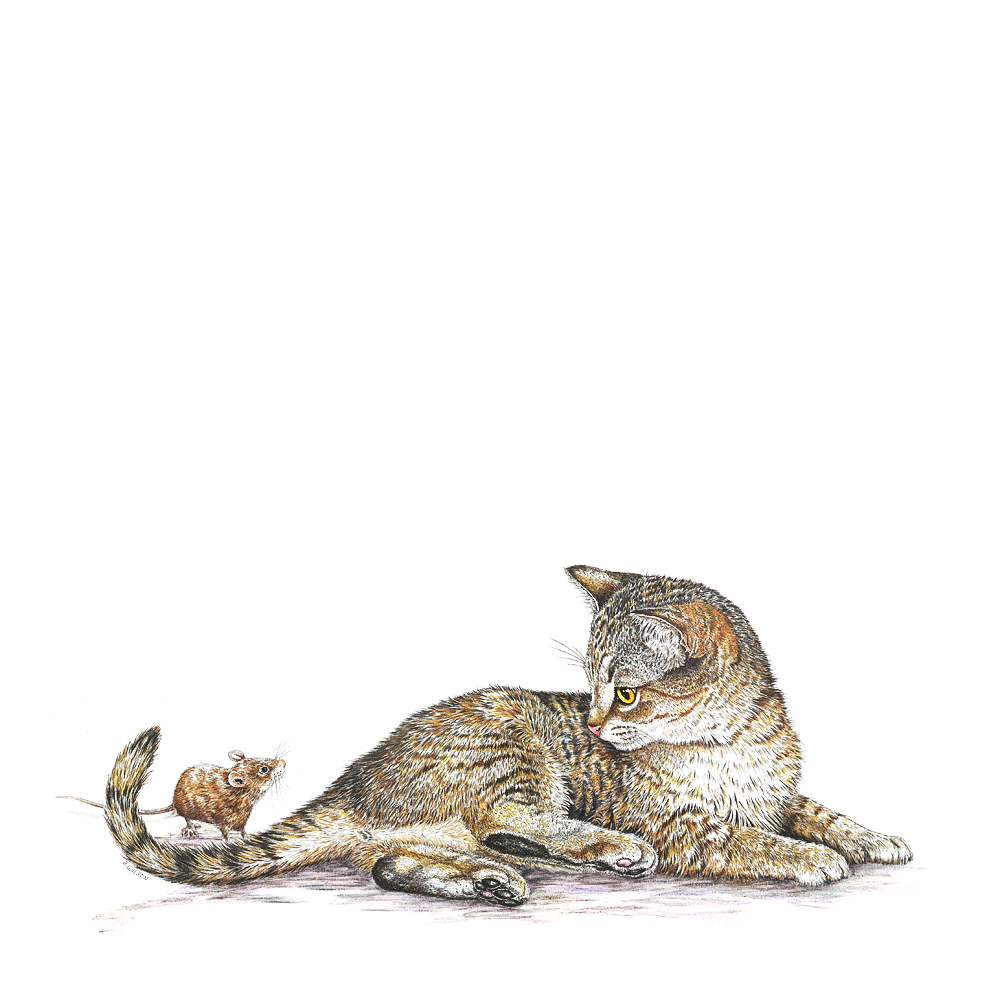 Kitten with Mouse Limited-Edition Print