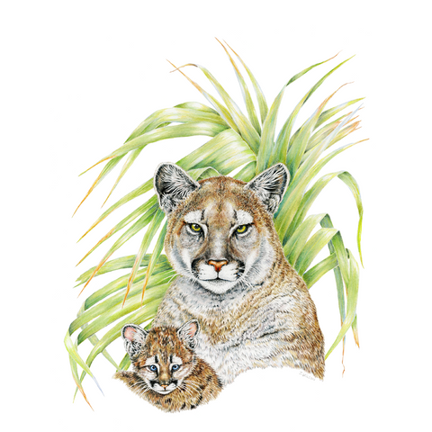 Panther with Cub Limited-Edition Print