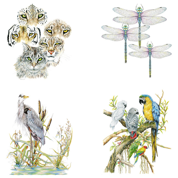 Wildlife Notecards, four-pack