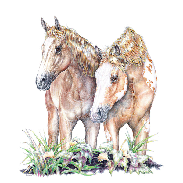 Two Horses Wildlife T-shirt