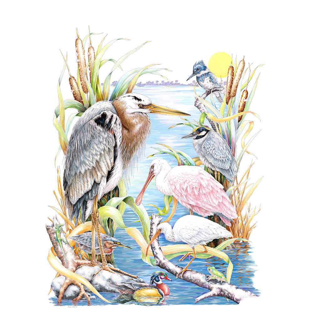 Waterbirds Limited-Edition Print