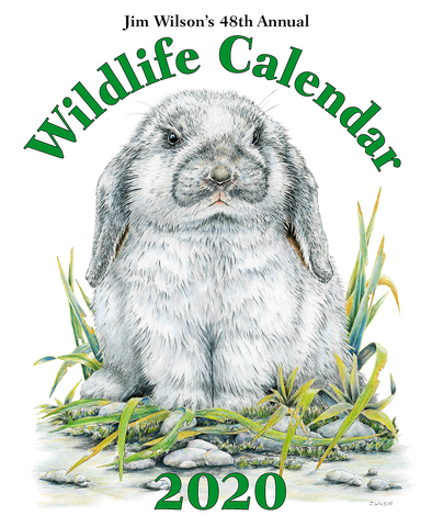 2020 Wildlife Calendar Cover