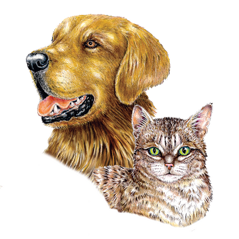 Dog & Cat Wildlife Art Cloth Face Mask