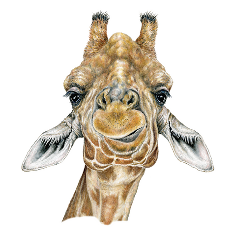Giraffe Wildlife Art Cloth Face Mask
