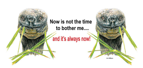 "Galapagos Tortoise ""Now is Not The Time"" Mug"