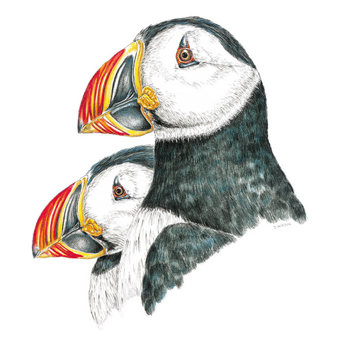 Puffin Wildlife Art Cloth Face Mask