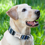 Personalized Nylon Dog Collar -  DoggiDreams