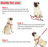 No Pull Reflective Dog Harness and Leash Set -  DoggiDreams