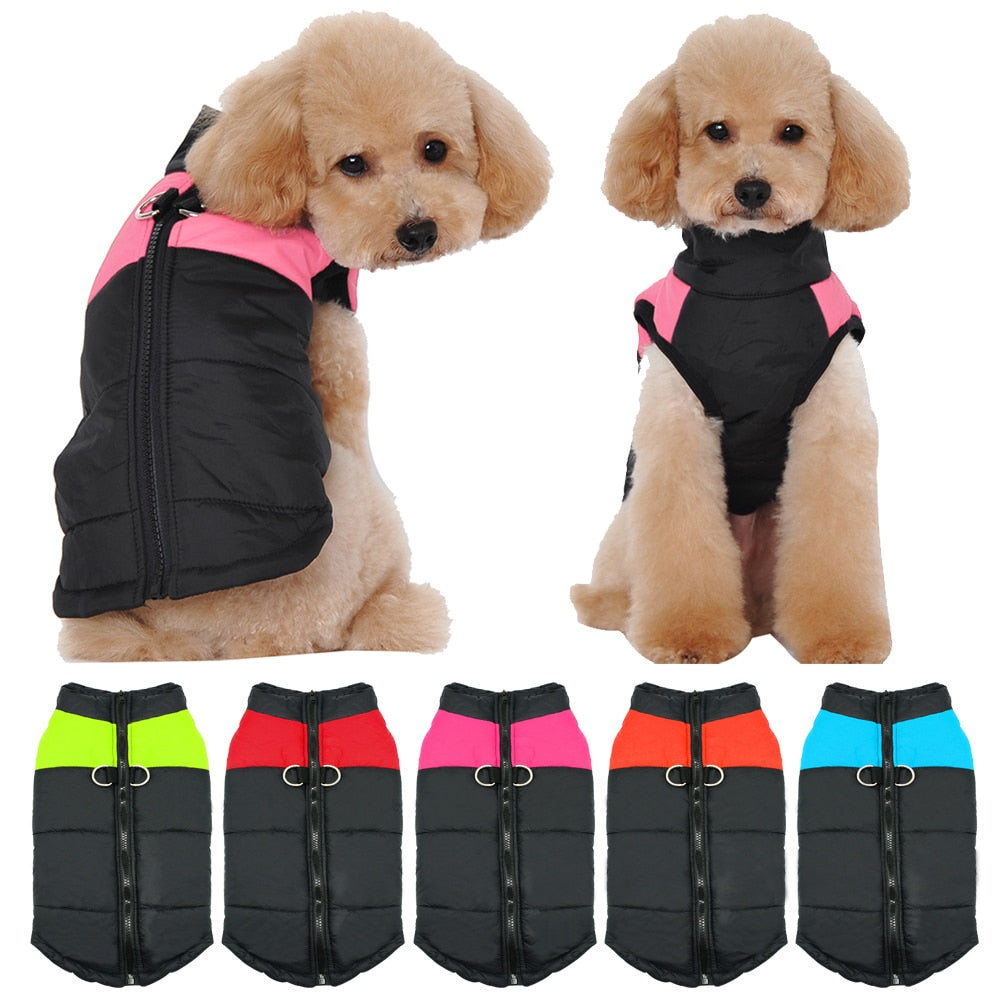 Dog Comfort Vest -  DoggiDreams