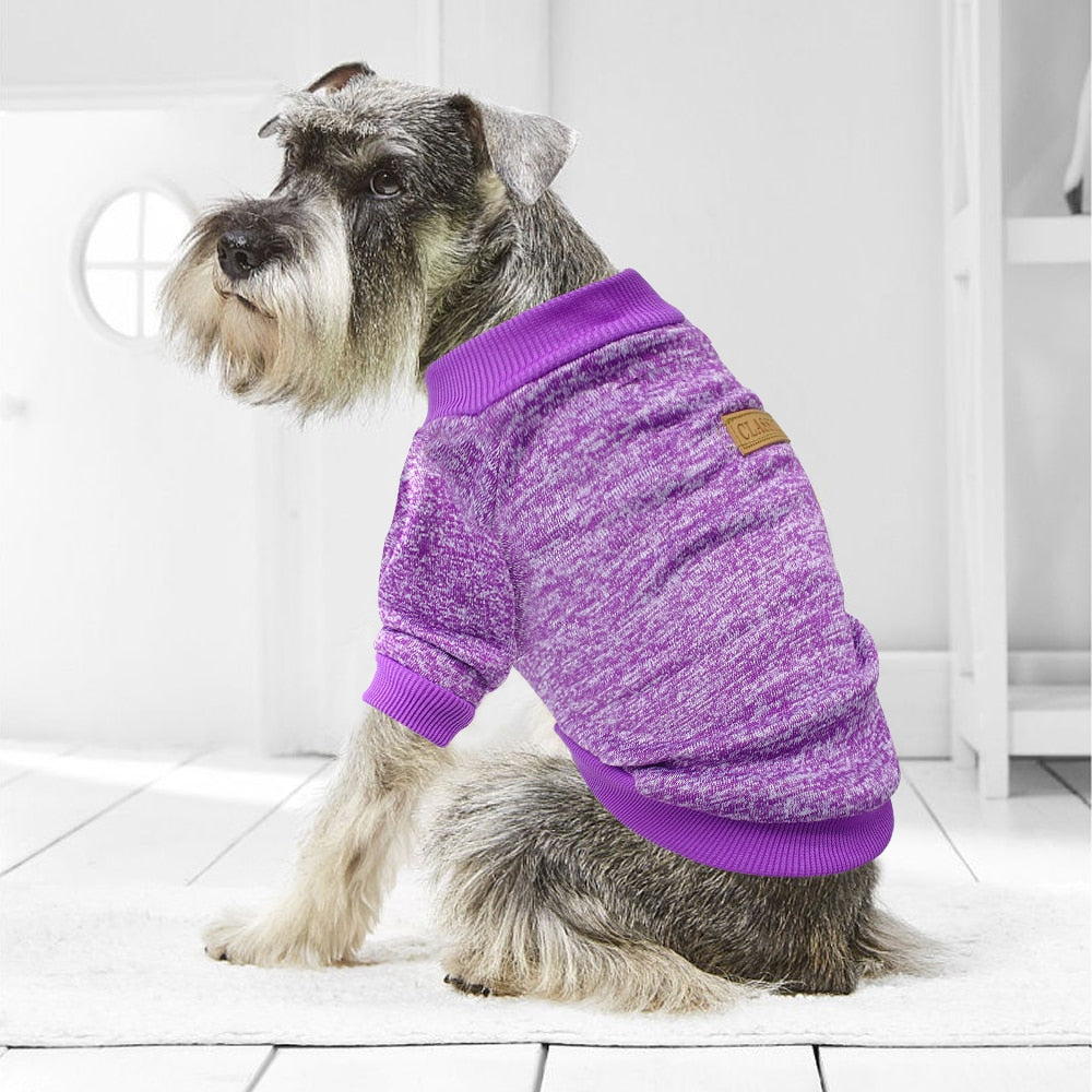 Cute Dog Sweatshirt -  DoggiDreams