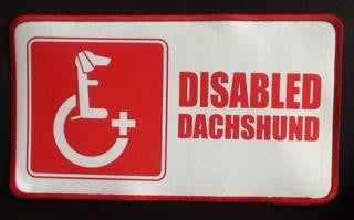 DachsieAid Patch Disabled Dachshund