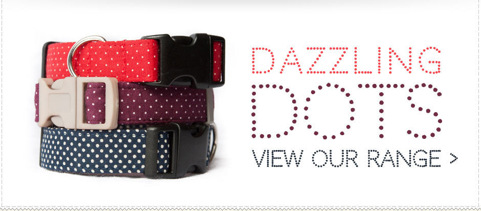 http://www.walkmethisway.com/collections/dazzling-dots