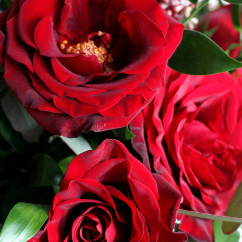 valentine roses delivered by sewickley florist
