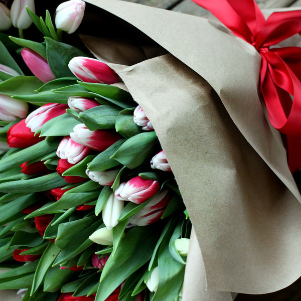 valentine tulips delivered in sewickley & pittsburgh