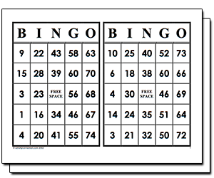 Double Bingo Cards