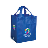 NON WOVEN CARRY ALL BAG NW4300
