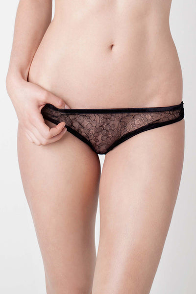 Damaris - Panther Lace Classic Knicker