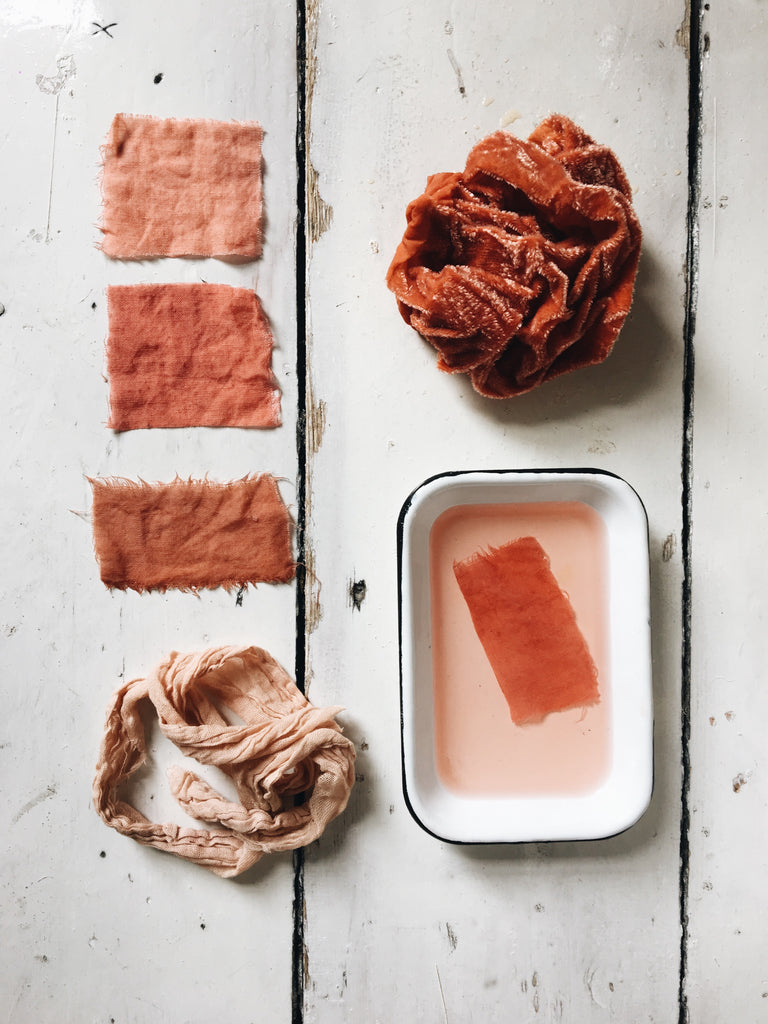 Introduction to Natural Dyeing | September 5th 2020