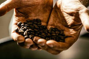 Buying roasted coffee for home – a beginner's guide.
