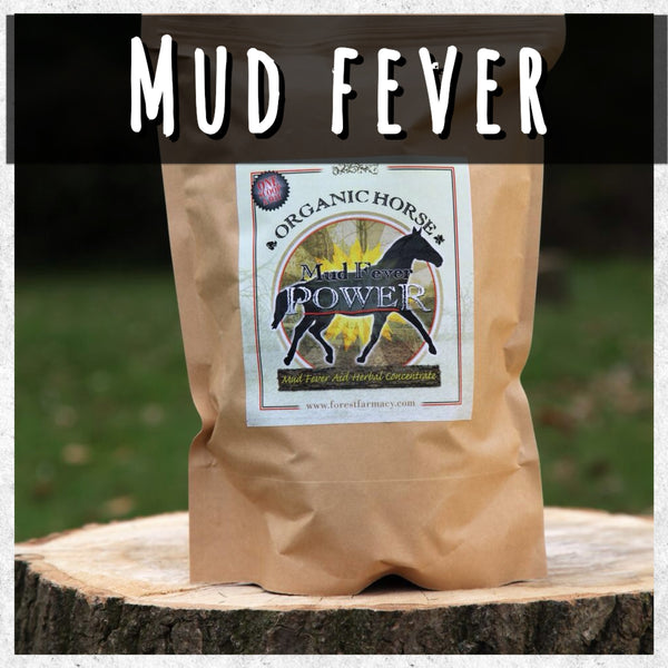 Mud Power- For mud  fever, 3 months