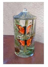 Load image into Gallery viewer, Monarch Butterfly Small Cylinder