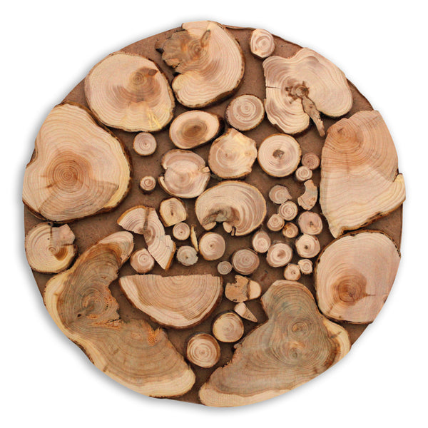 Wood Rustic Branch Trivet or Coaster