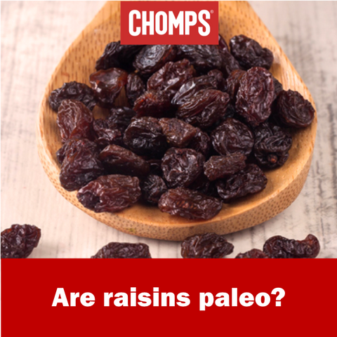 Are Raisins Paleo?