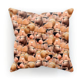 Cushions - Booty Invasion Cushion