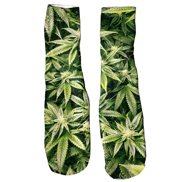 Kush Leaves Foot Glove Socks-Shelfies-One Size-| All-Over-Print Everywhere - Designed to Make You Smile