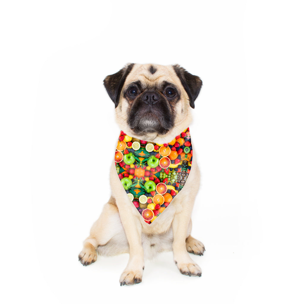 Fruit Explosion Pet Bandana-Gooten-24x24 inch-| All-Over-Print Everywhere - Designed to Make You Smile