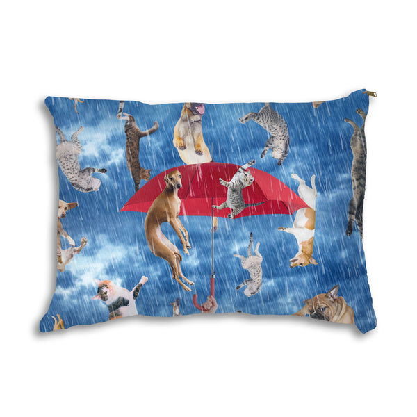 It's Raining Cats And Dogs Pet Bed-teelaunch-One Size-| All-Over-Print Everywhere - Designed to Make You Smile