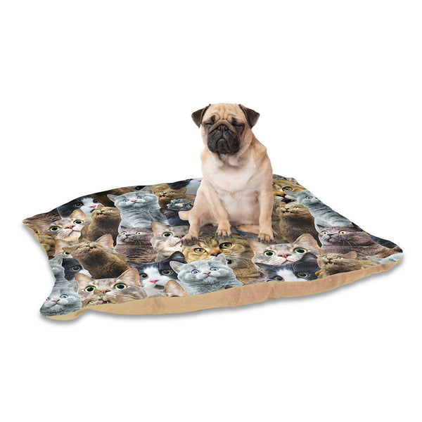 Scaredy Cat Invasion Pet Bed-teelaunch-One Size-| All-Over-Print Everywhere - Designed to Make You Smile