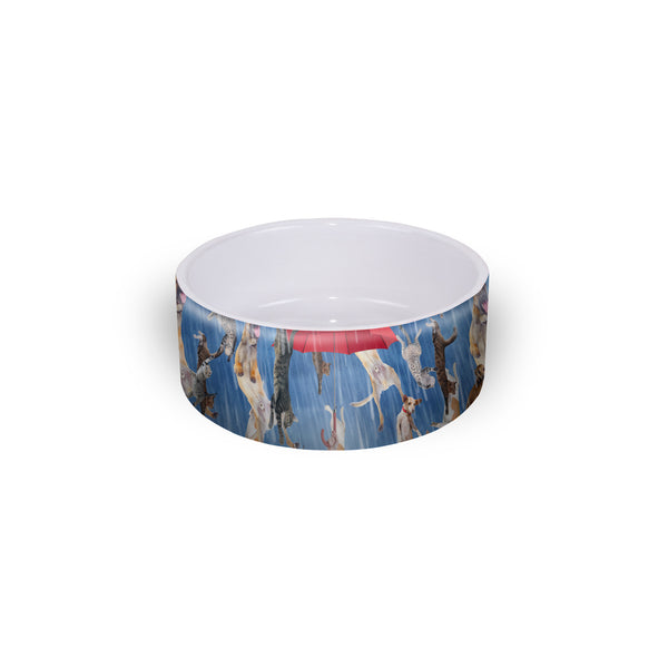 Pet Bowls - It's Raining Cats And Dogs Pet Bowl