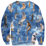 Sweaters - It's Raining Cats And Dogs Sweater