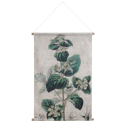 Wall Chart: Botanical XL