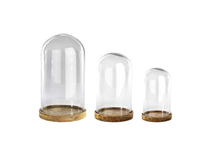 Clear Glass Dome Small
