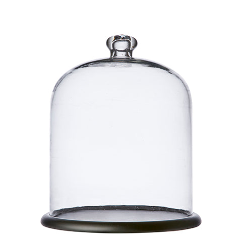 Glass bell jar dome