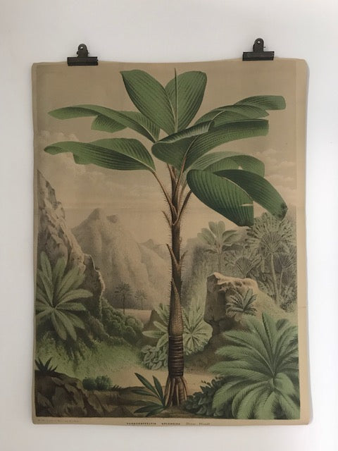 Botanical paper wall hanging