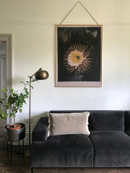 Canvas wall hanging - The Night Cereus