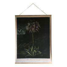 Canvas wall hanging - American Cowslip